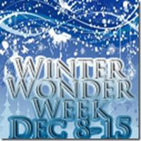 Bloggers Wanted: Winter Wonder Week