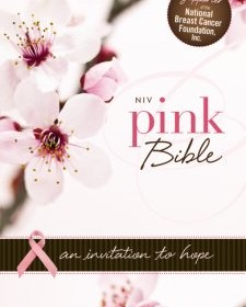 NIV Pink Bible: An Invitation to Hope