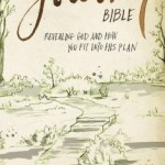 NIV The Journey Bible Review