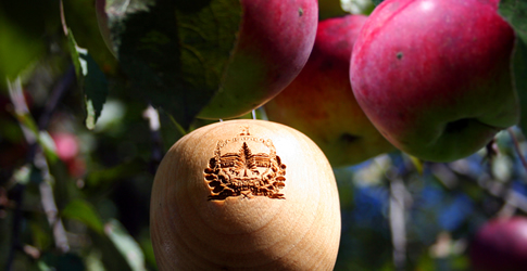 Apple Picking in Vermont Could Lead to an iPod