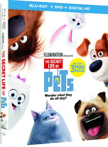 The Secret Life of Pets DVD Arriving In Time for Holidays